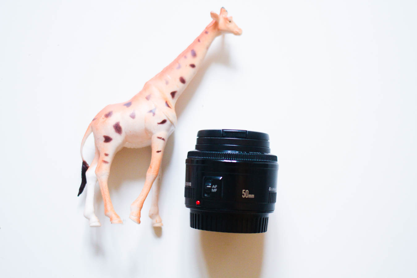 photo stuff-3